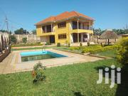 Bunga Swimming Pool Mansion On Sell | Houses & Apartments For Sale for sale in Central Region, Kampala