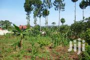 Plots of Land for Quick and Cheap Sale in Bukerere High Speed Dev't Tc | Land & Plots For Sale for sale in Central Region, Mukono