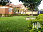 Bukoto4 Bedroom Standalone House for Rent | Houses & Apartments For Rent for sale in Central Region, Kampala