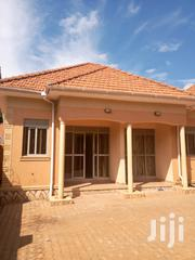 Kiira Self Continud House for Rent at 250k   Houses & Apartments For Rent for sale in Central Region, Kampala