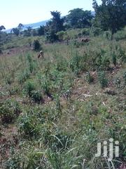 Land 50 Acres in Nkokonjeru Mukono Road With Lake Victoria View | Land & Plots For Sale for sale in Central Region, Kampala