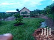 25 Decimals In Mityana At 10m | Land & Plots For Sale for sale in Central Region, Wakiso