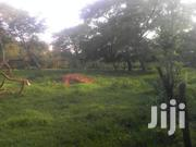 Land 175 Acres in Kasanda District Mityana Road | Land & Plots For Sale for sale in Central Region, Kampala