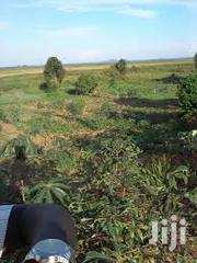 Square Mile In Nakasongola | Land & Plots For Sale for sale in Central Region, Nakasongola