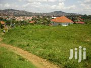 Very Hot Half Acre on Quick Sale in Muyenga With Gd View Clean Title | Land & Plots For Sale for sale in Central Region, Kampala