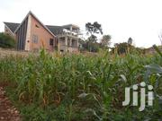 Plot For Sale!! Kasangati- Magere 85m 100x100ft   Land & Plots For Sale for sale in Central Region, Kampala