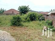 Quick Sale Plot In Mukono-nakabago In Good Developed Area At 35m | Land & Plots For Sale for sale in Central Region, Mukono