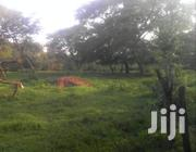 MITYANA ROAD KASANDA: 175 Acres @ 3.5m/Acre | Land & Plots For Sale for sale in Central Region, Mubende