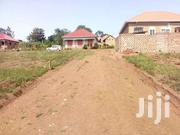 Xmass Bonanza Is  In Maya Near Singer Walukaga One Plot Title At 16.5m | Land & Plots For Sale for sale in Central Region, Kampala