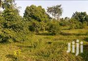 MASAKA ROAD NKOZI: 20 Acres  | Land & Plots For Sale for sale in Central Region, Mpigi