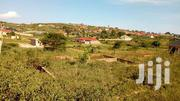 Land In Seeta Along College Road Plots Of 50by100 With Ready Title | Land & Plots For Sale for sale in Central Region, Mukono