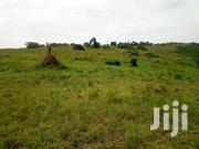 Namasumbi Mukono Plots For Sale | Land & Plots For Sale for sale in Central Region, Mukono