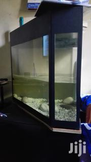 Aquarium | Pet's Accessories for sale in Central Region, Kampala