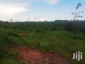 Land for Sale at 8m Per Acre Its 100 Acres in Nyenga