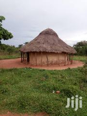 Aready Farm | Land & Plots For Sale for sale in Central Region, Nakasongola