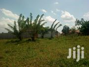 Plots for Sale in Gayaza Town | Land & Plots For Sale for sale in Central Region, Kampala