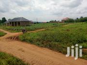 HOT DEAL MATUGA-KAVULE ESTATE (11-15m Ugx 12 Plots on Quickly Sale 50x | Land & Plots For Sale for sale in Central Region, Kampala