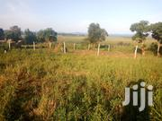 Tittled Plot on Sell in Bweya Entebbe Road | Land & Plots For Sale for sale in Central Region, Kampala