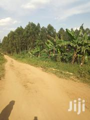 Kats and Deo Surveys LTD | Land & Plots For Sale for sale in Central Region, Wakiso