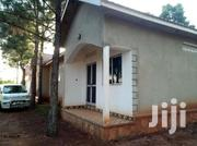 Kira Modern Two Bedroom House for Rent at 250K | Houses & Apartments For Rent for sale in Central Region, Kampala