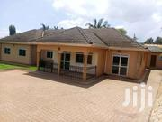 Magnificent On 25 Decimals 4bedrooms BUKOTO Near Kabila Ctry Club | Houses & Apartments For Sale for sale in Central Region, Kampala