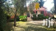 Bungalow House for Rent in Kitintale   Houses & Apartments For Rent for sale in Central Region, Kampala