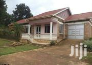 Najjera Modern Three Bedroom Standalone House for Rent at 800K | Houses & Apartments For Rent for sale in Central Region, Kampala
