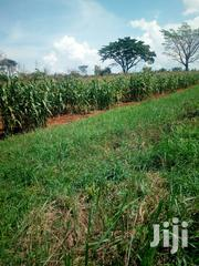 10 Acres for Sale in Kikyusa Luwero | Land & Plots For Sale for sale in Central Region, Luweero