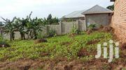 12.5 Decimals (50*100 Feet) In Namataba Town Mukono District | Land & Plots For Sale for sale in Central Region, Kampala