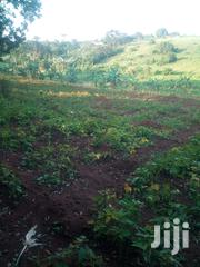 4 Acres of Land in Kikyusa Luwero | Land & Plots For Sale for sale in Central Region, Luweero
