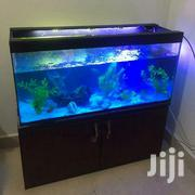 Home/Office Aquarium | Home Accessories for sale in Central Region, Kampala