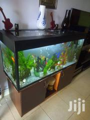 Home/Office Aquarium | Farm Machinery & Equipment for sale in Central Region, Kampala