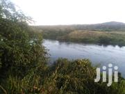 3.5acres At Kibibi Budondo Jinja District Touching The Waters At 245M | Land & Plots For Sale for sale in Eastern Region, Jinja