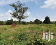 Ziru Land Available | Land & Plots For Sale for sale in Central Region, Kampala