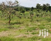 Land For Sale Available In Wakiso Mabombwe | Land & Plots For Sale for sale in Central Region, Wakiso