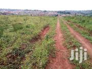 Cheap Land in Mukono Town   Land & Plots For Sale for sale in Central Region, Mukono