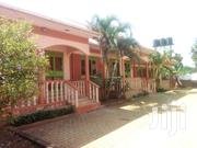 Ntinda 2 Bedroom Modern House for Rent   Houses & Apartments For Rent for sale in Central Region, Kampala