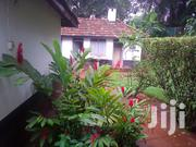 A Colonial House for Rent in Kololo | Houses & Apartments For Rent for sale in Central Region, Kampala