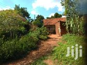Plot On Quick Sale In Heart Of Buziga In Rich Neighbos Give Away Price | Land & Plots For Sale for sale in Central Region, Kampala