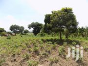 150 Acres of Private Mailo Land for Sale in Luweero-Kakooge Each at 4m | Land & Plots For Sale for sale in Central Region, Luweero