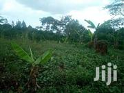 20m And Get Titled 2 Acres | Land & Plots For Sale for sale in Central Region, Mukono