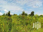 Land 1 Hecter .Good For Both Settlement And Ferming. | Land & Plots For Sale for sale in Nothern Region, Gulu