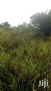 50 Acres Of Private Land On Sale In Luweero-kakooge Each At 3.5m | Land & Plots For Sale for sale in Central Region, Luweero