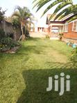 Its 3 Bedrooms Self Contain in Mutungo at 600000 | Houses & Apartments For Rent for sale in Kampala, Central Region, Uganda