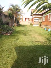 Its 3 Bedrooms Self Contain in Mutungo at 600000 | Houses & Apartments For Rent for sale in Central Region, Kampala