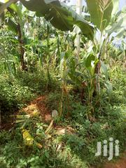 Nakim Property Developers | Land & Plots For Sale for sale in Eastern Region, Jinja