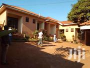 Fully Fuctioning Guest House On 20decimals In Mukono Town At 200m | Houses & Apartments For Sale for sale in Central Region, Kampala