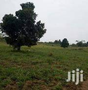 Farm Land 200acres in Luweero Kikyusa at 7M Per Acre | Land & Plots For Sale for sale in Central Region, Kampala