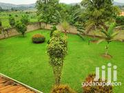 Very Hot Mansion on Quick Sale in Heart of Munyonyo Private Mile Title | Houses & Apartments For Sale for sale in Central Region, Kampala