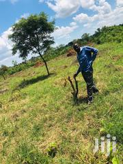 28arces For Sale Semuto Kapeeka | Land & Plots For Sale for sale in Central Region, Kampala